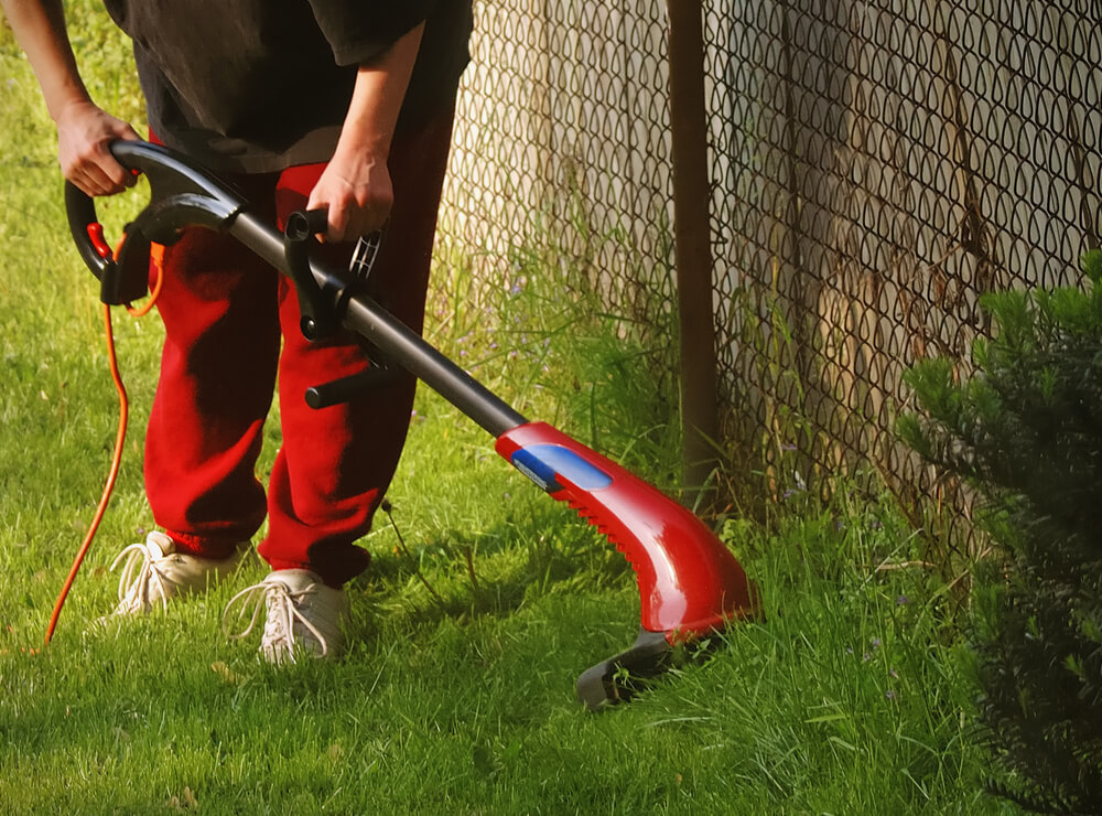 Starting a Landscaping Business