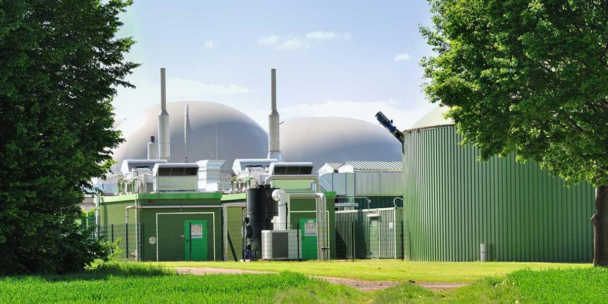 Anaerobic Digestion Plant With Two Trees and a Bright Green Field in the Foreground