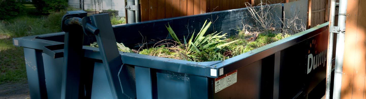 Roll off dumpster filled with yard waste