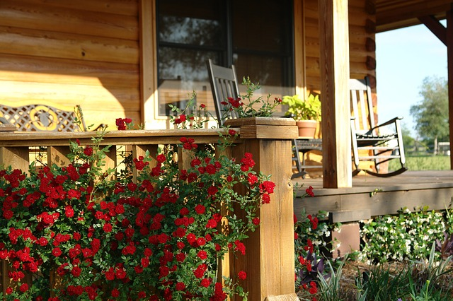 Wooden porch surrounded by low red flowers.