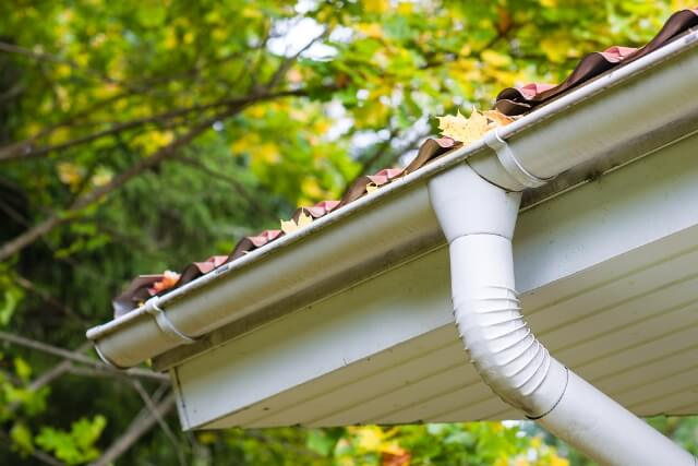 Image of Cleaning Gutters as a Winter Job